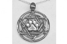 jewish-star-with-silver-paw