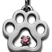 June - Swarovski® Puppy Paw® Pendant