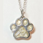Memory Paws®  from Puppy Paws®
