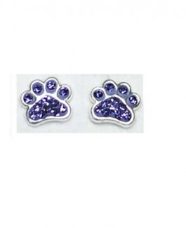Purple Sparkle Sterling Earrings
